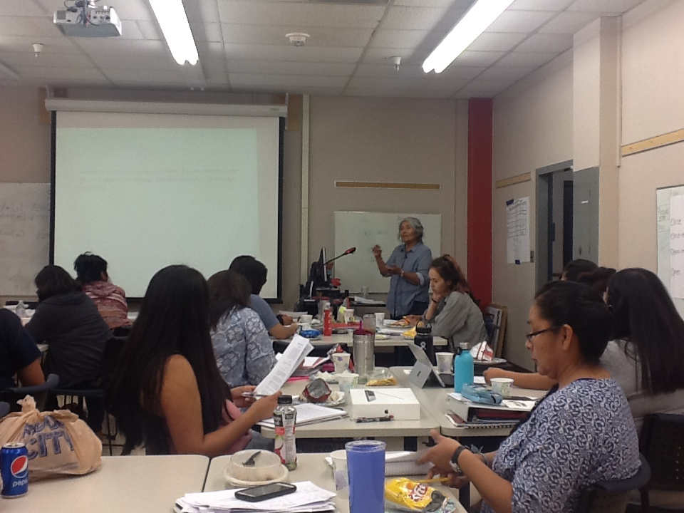 A photo of one of the guest speakers AILDI has at their summer sessions