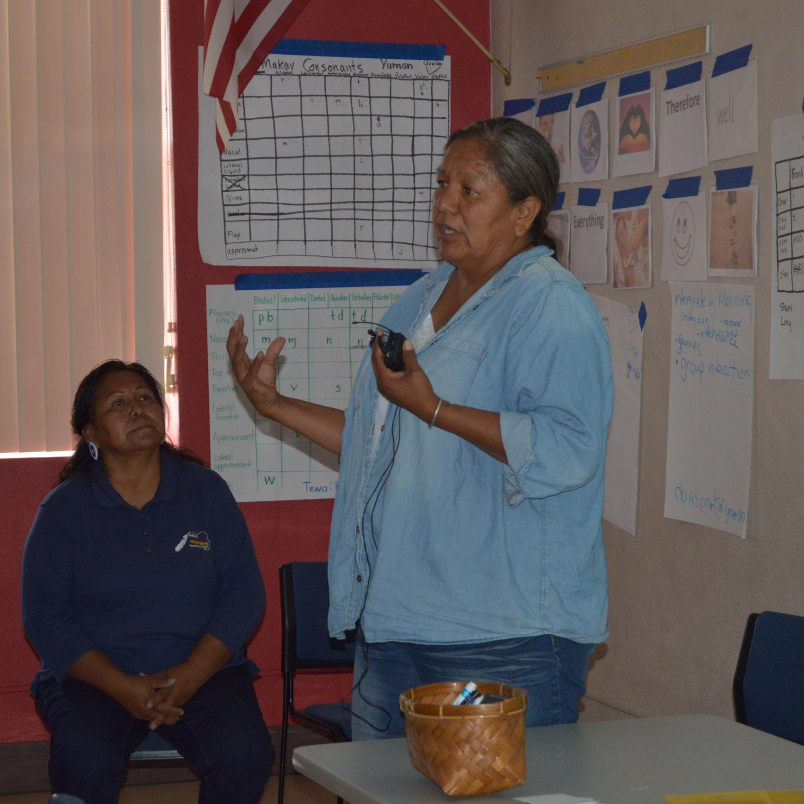A photo of Cordella Moses and Twyla guest speaking and an AILDI summer session